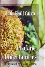 Profane Uncertainties by Luis Raul Calvo