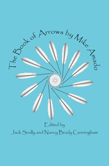 The Book of Arrows by Mike Amado
