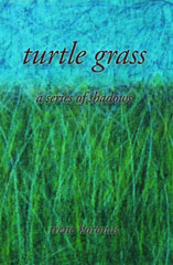 turtle grass a series of shadows by irene koronas